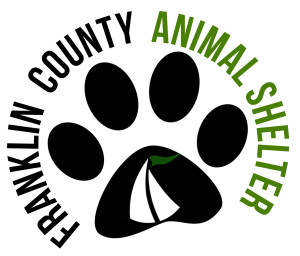 Animals for adoption at Franklin County Animal Shelter in Rocky Mount, Virginia