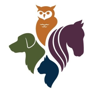 Animals for adoption at Erie County SPCA in West Seneca, New York