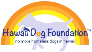Animals for adoption at Hawaii Dog Foundation in Waipahu, Hawaii
